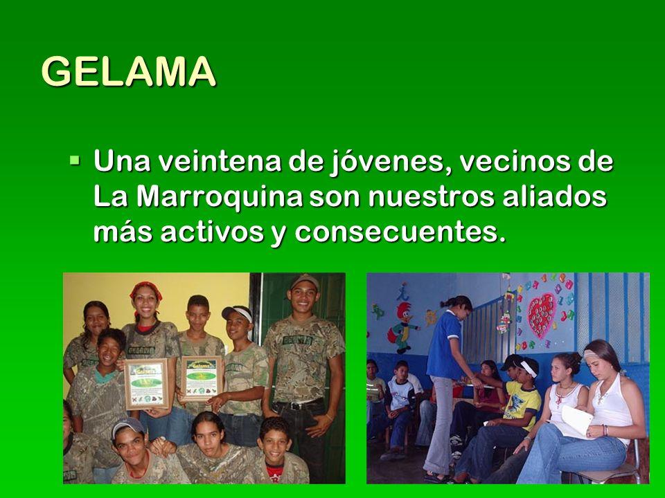 GELAMA Una veintena de jóvenes, vecinos de La Marroquina son nuestros aliados más activos y consecuentes.