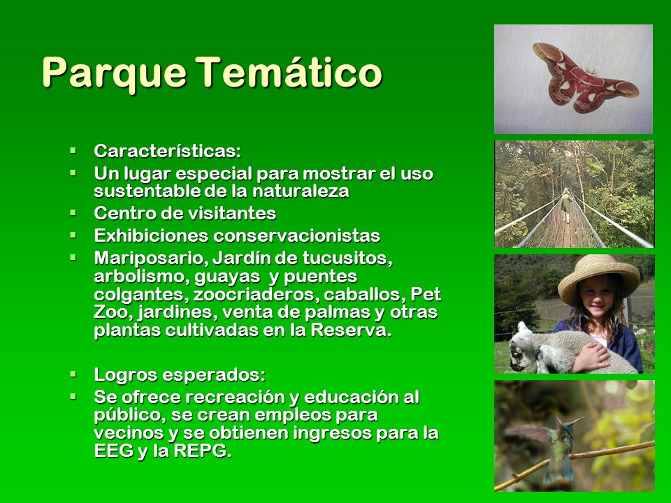 Parque Temático Características: