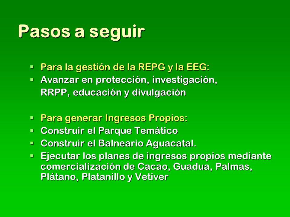 Pasos a seguir Para la gestión de la REPG y la EEG: