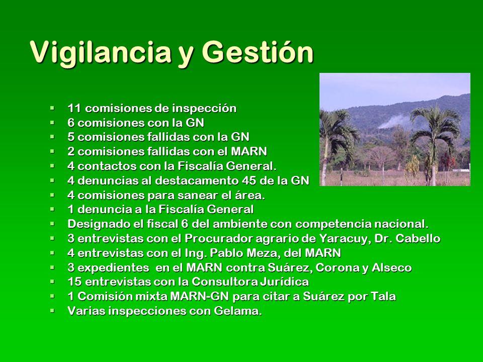 Vigilancia y Gestión 11 comisiones de inspección