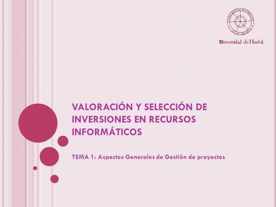 VALORACIÓN Y SELECCIÓN DE INVERSIONES EN RECURSOS INFORMÁTICOS