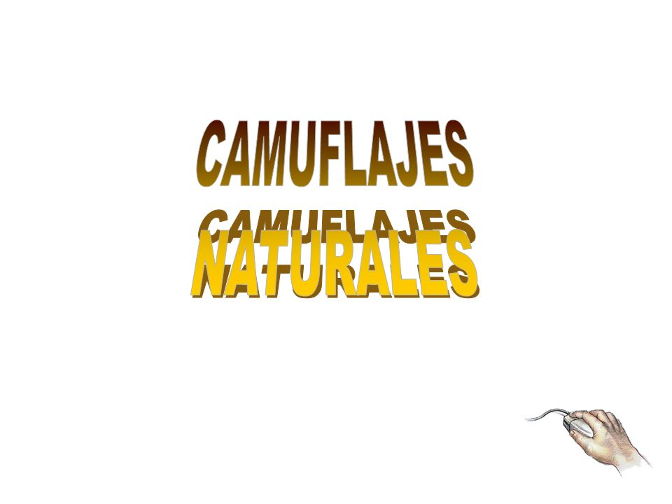CAMUFLAJES NATURALES