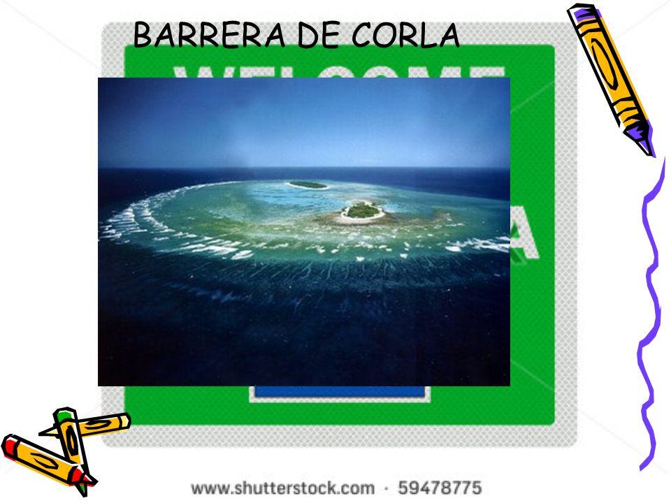BARRERA DE CORLA