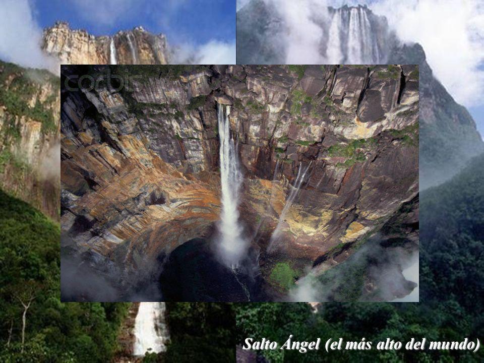 Salto Ángel (el más alto del mundo)