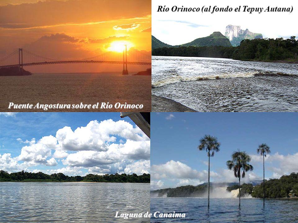 Río Orinoco (al fondo el Tepuy Autana)
