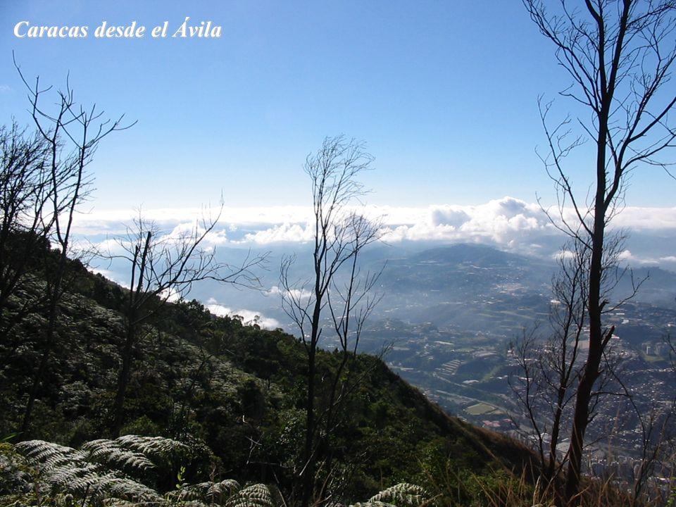 Caracas desde el Ávila