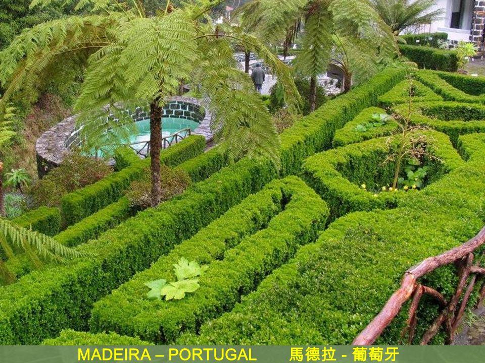 MADEIRA – PORTUGAL 馬德拉 - 葡萄牙