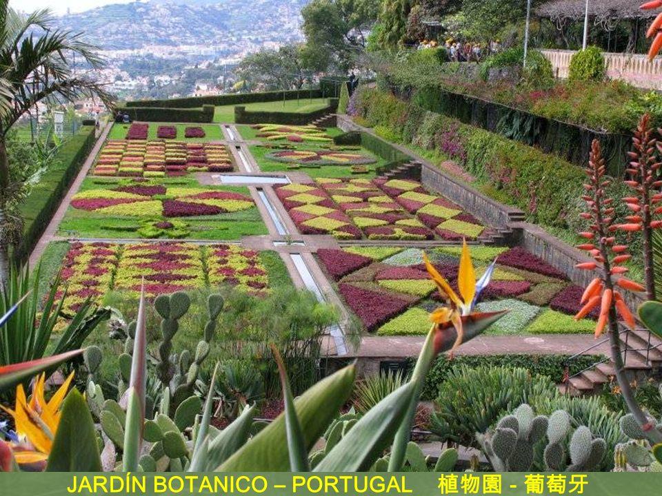 JARDÍN BOTANICO – PORTUGAL 植物園 - 葡萄牙