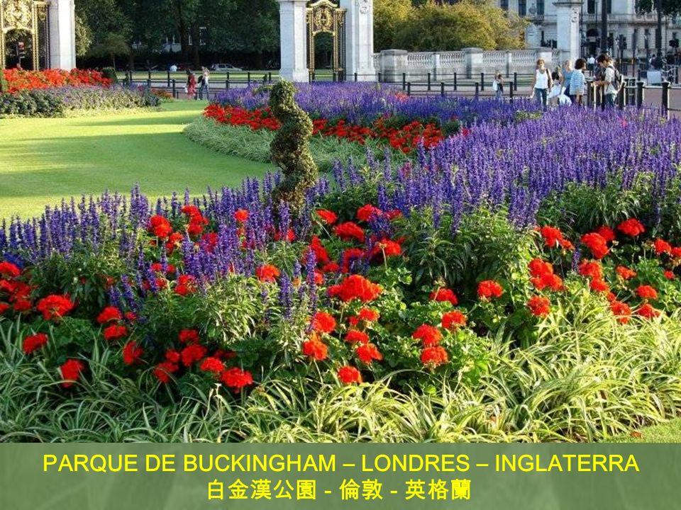 PARQUE DE BUCKINGHAM – LONDRES – INGLATERRA
