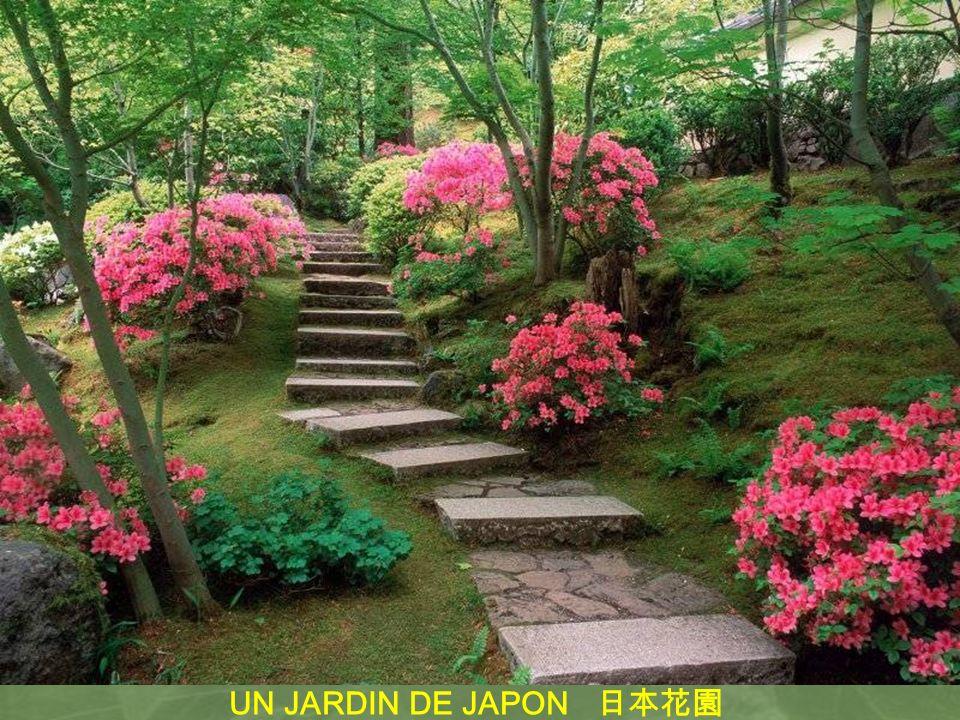 UN JARDIN DE JAPON 日本花園