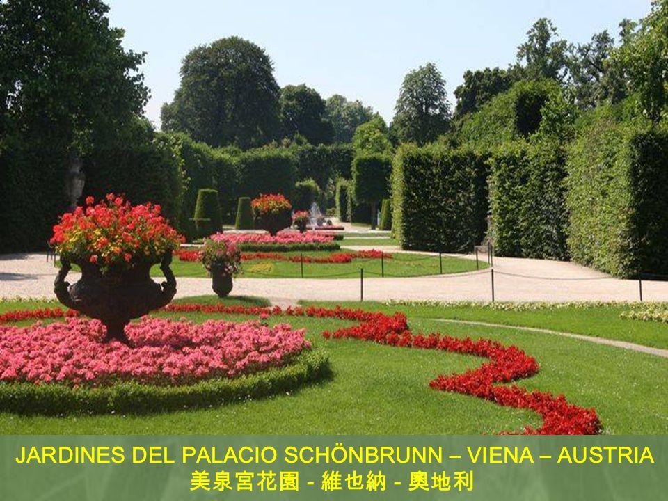 JARDINES DEL PALACIO SCHÖNBRUNN – VIENA – AUSTRIA