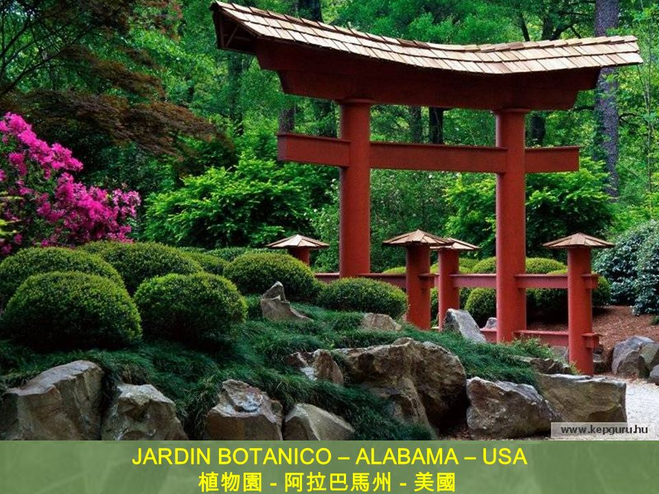 JARDIN BOTANICO – ALABAMA – USA
