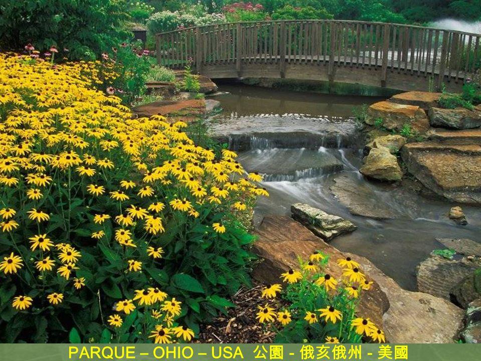 PARQUE – OHIO – USA 公園 - 俄亥俄州 - 美國