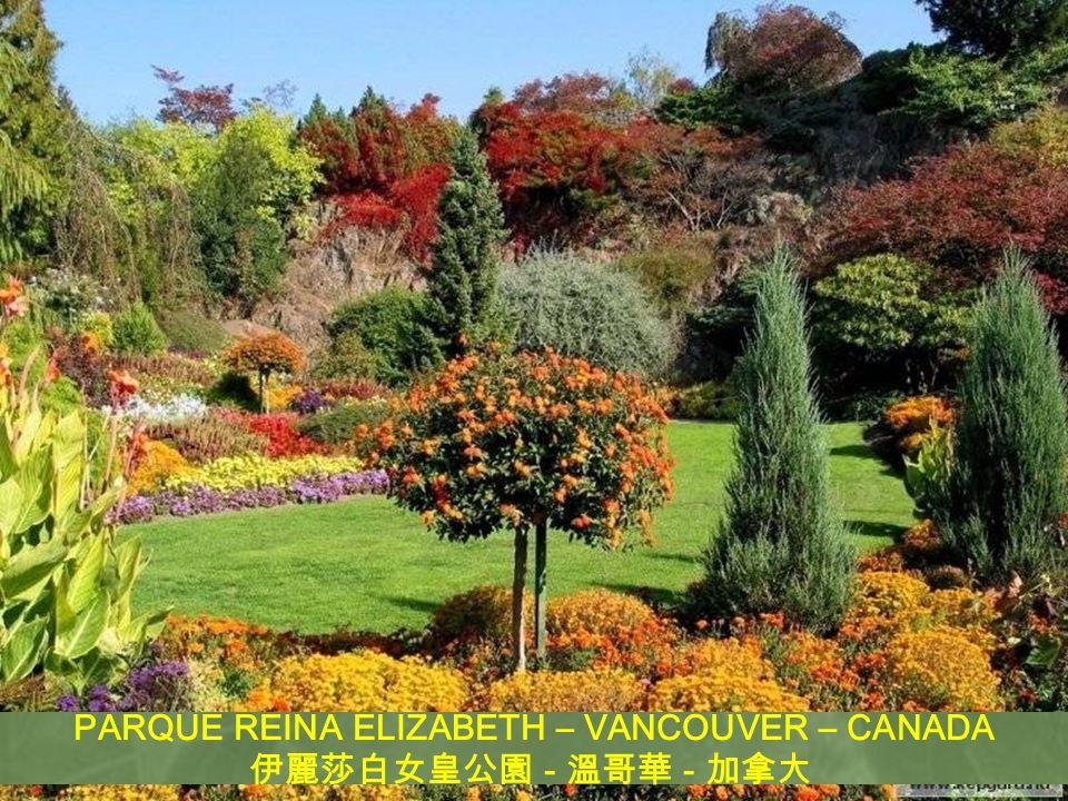 PARQUE REINA ELIZABETH – VANCOUVER – CANADA