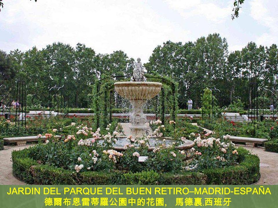 JARDIN DEL PARQUE DEL BUEN RETIRO–MADRID-ESPAÑA 德爾布恩雷蒂羅公園中的花園, 馬德裏﹐西班牙