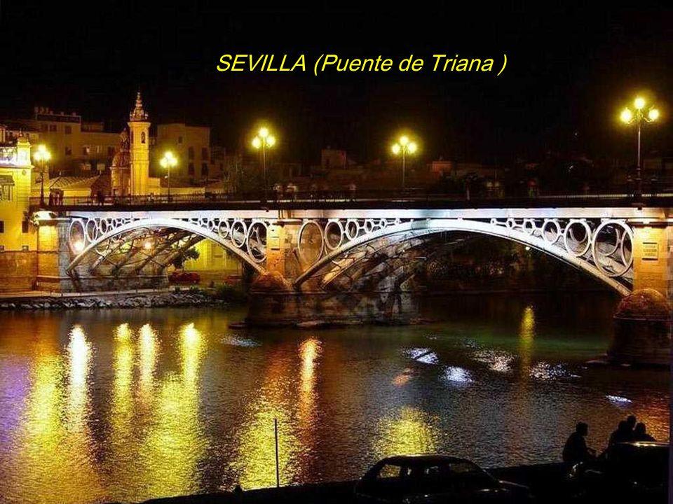 SEVILLA (Puente de Triana )