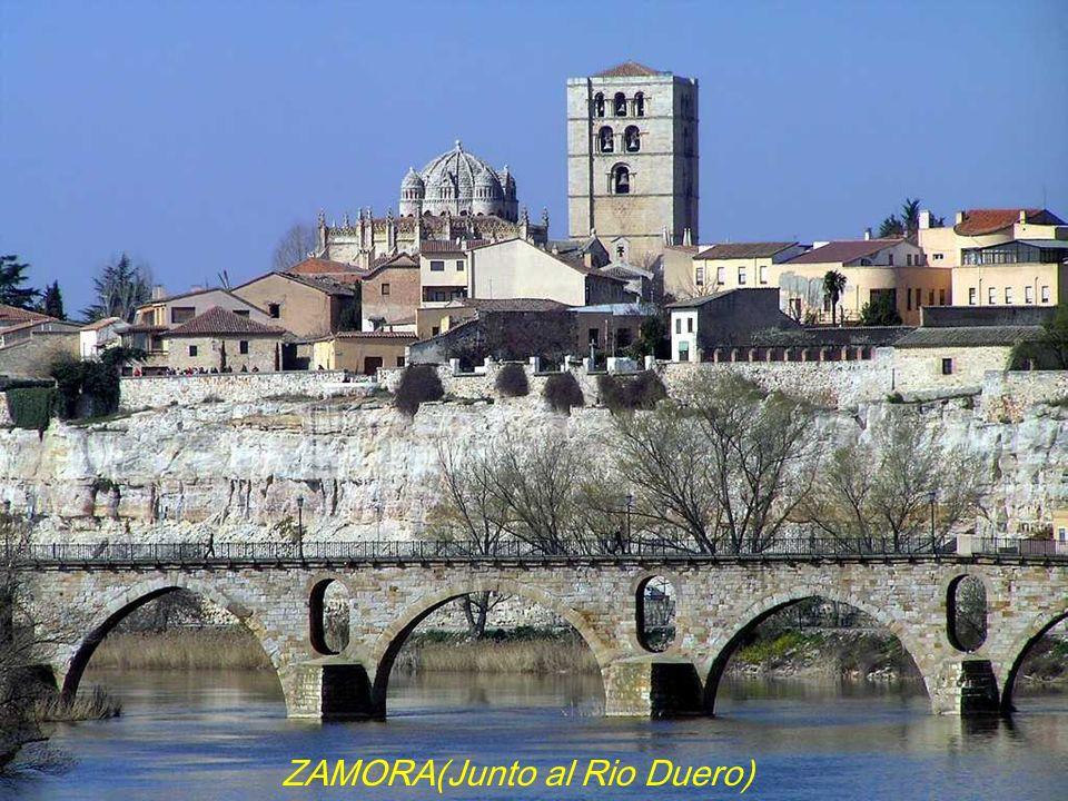 ZAMORA(Junto al Rio Duero)
