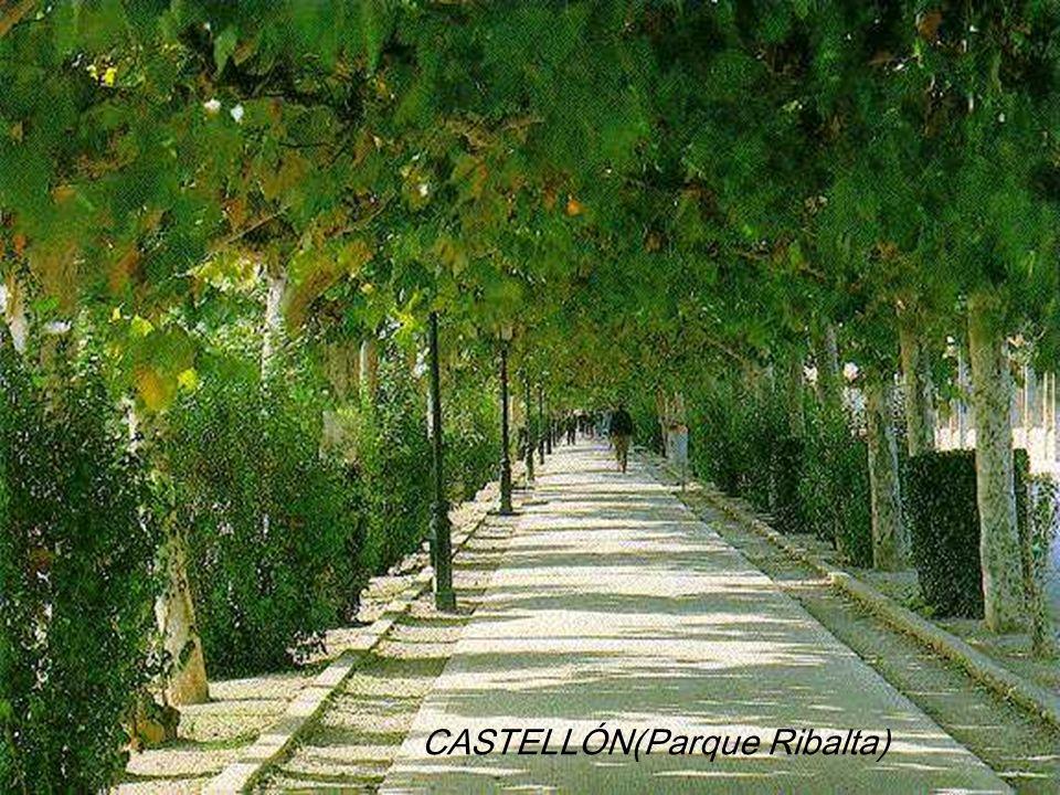 CASTELLÓN(Parque Ribalta)