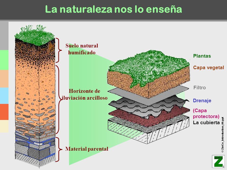 La naturaleza nos lo enseña