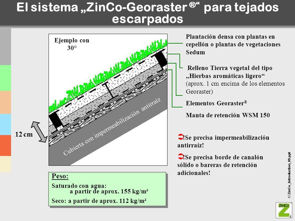 """El sistema """"ZinCo-Georaster ® para tejados escarpados"""