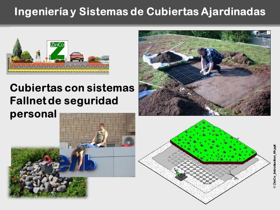 Ingeniería y Sistemas de Cubiertas Ajardinadas