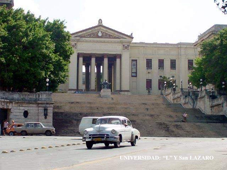 UNIVERSIDAD: L Y San LAZARO