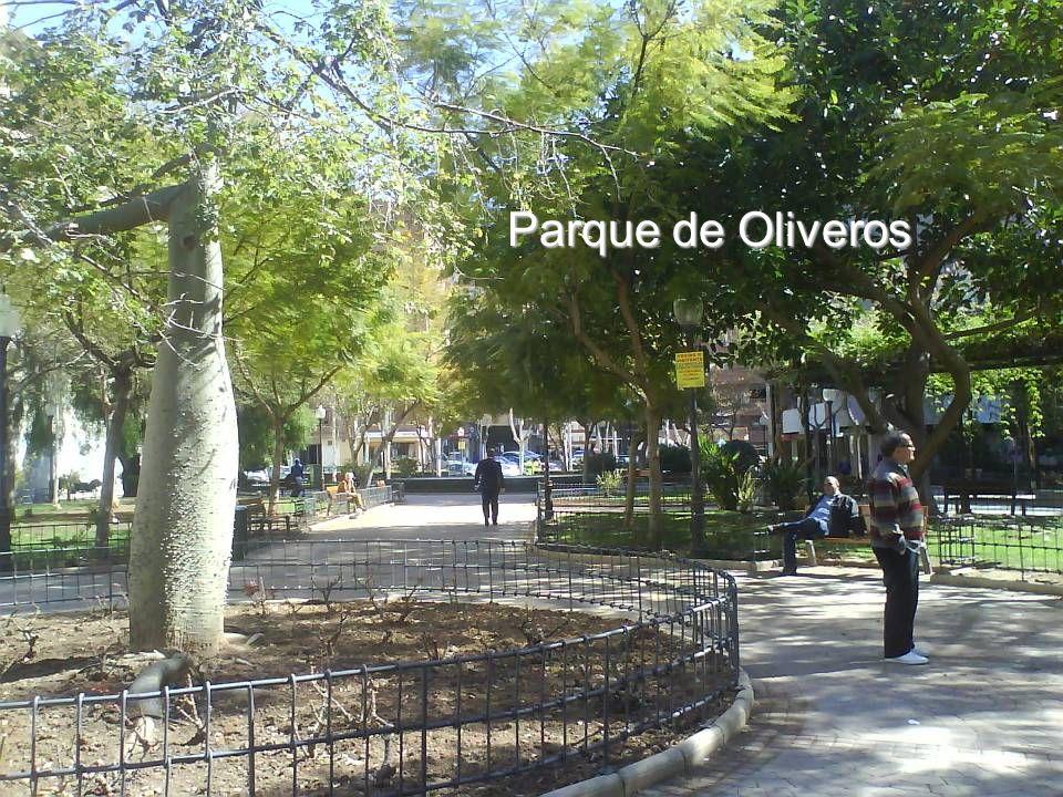 Parque de Oliveros