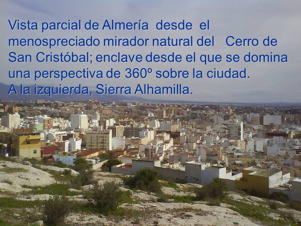 Vista parcial de Almería desde el menospreciado mirador natural del Cerro de San Cristóbal; enclave desde el que se domina una perspectiva de 360º sobre la ciudad.