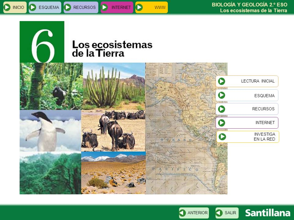 ESQUEMA INICIO ESQUEMA RECURSOS INTERNET WWW LECTURA INICIAL RECURSOS