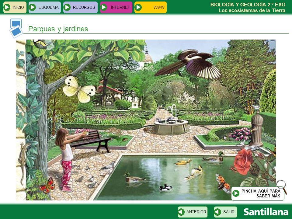 Parques y jardines INICIO ESQUEMA RECURSOS INTERNET WWW