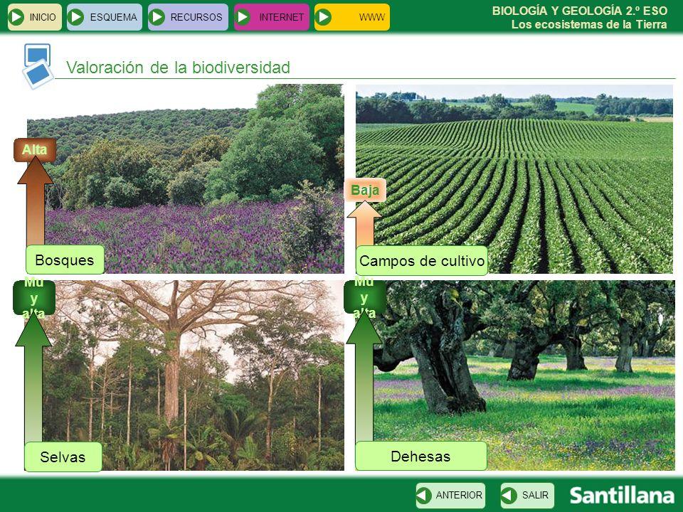 Valoración de la biodiversidad