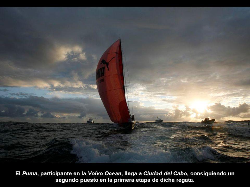 El Puma, participante en la Volvo Ocean, llega a Ciudad del Cabo, consiguiendo un segundo puesto en la primera etapa de dicha regata.
