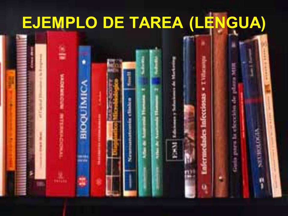 EJEMPLO DE TAREA (LENGUA)