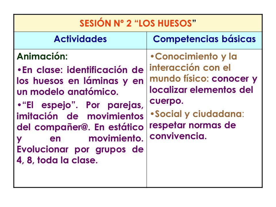 SESIÓN Nº 2 LOS HUESOS Actividades. Competencias básicas. Animación: En clase: identificación de los huesos en láminas y en un modelo anatómico.