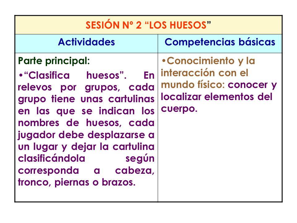 SESIÓN Nº 2 LOS HUESOS Actividades. Competencias básicas. Parte principal: