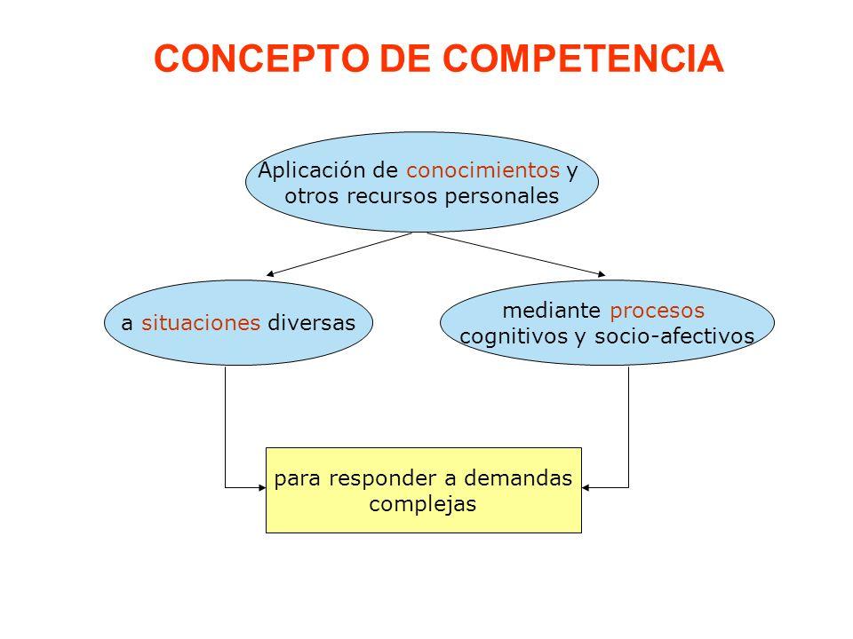 CONCEPTO DE COMPETENCIA