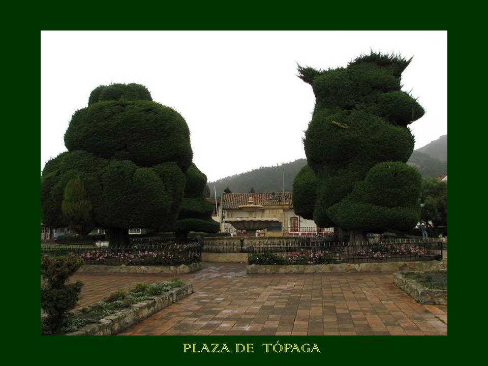 PLAZA DE TÓPAGA