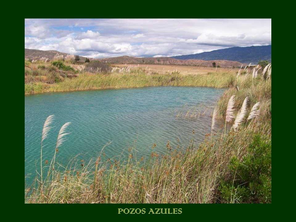POZOS AZULES