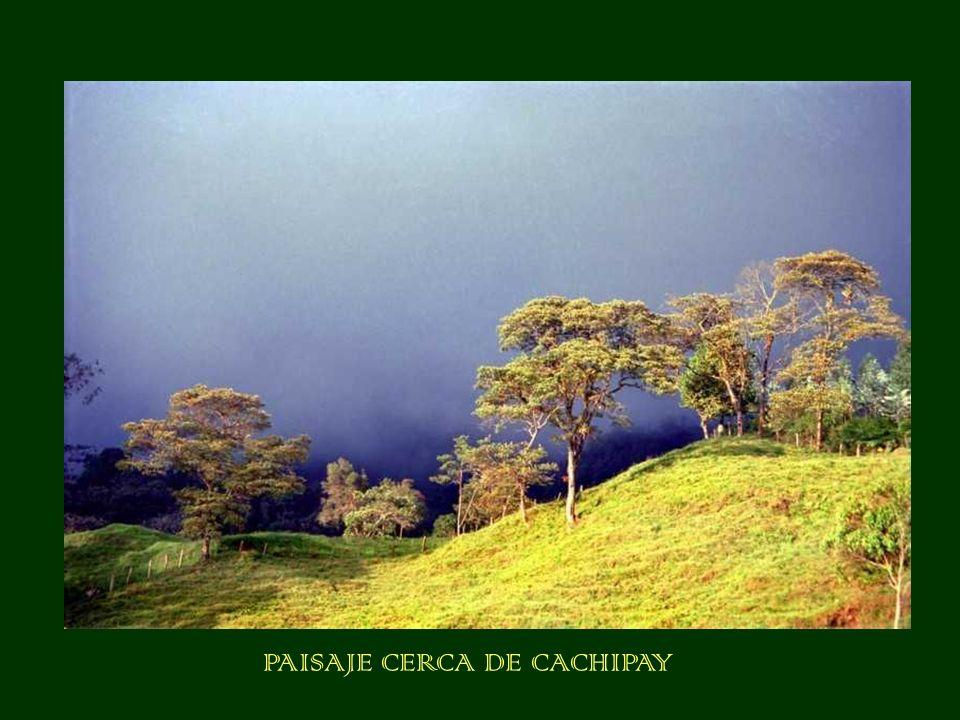 PAISAJE CERCA DE CACHIPAY