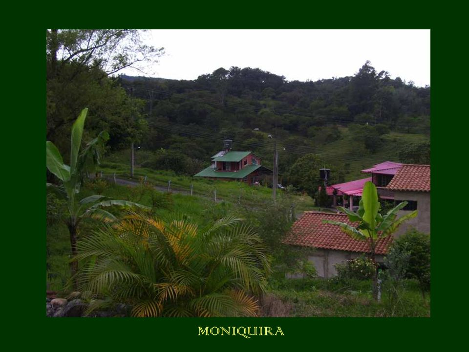 MONIQUIRA