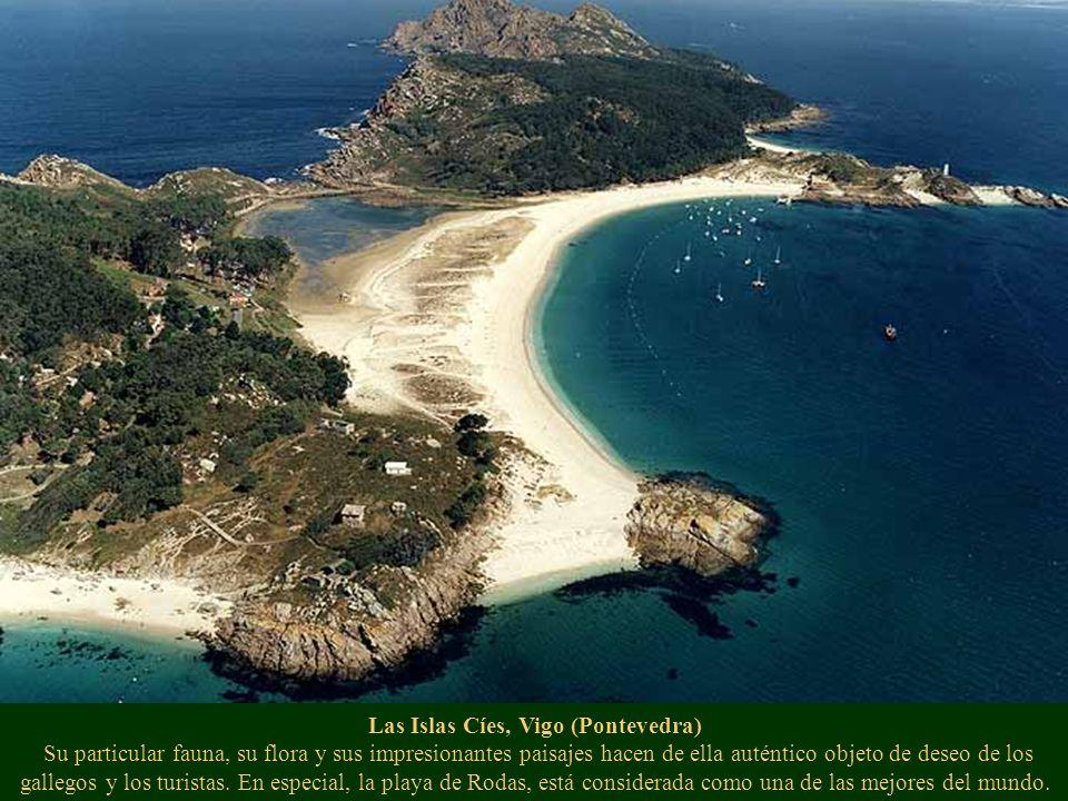 Las Islas Cíes, Vigo (Pontevedra) Su particular fauna, su flora y sus impresionantes paisajes hacen de ella auténtico objeto de deseo de los gallegos y los turistas.