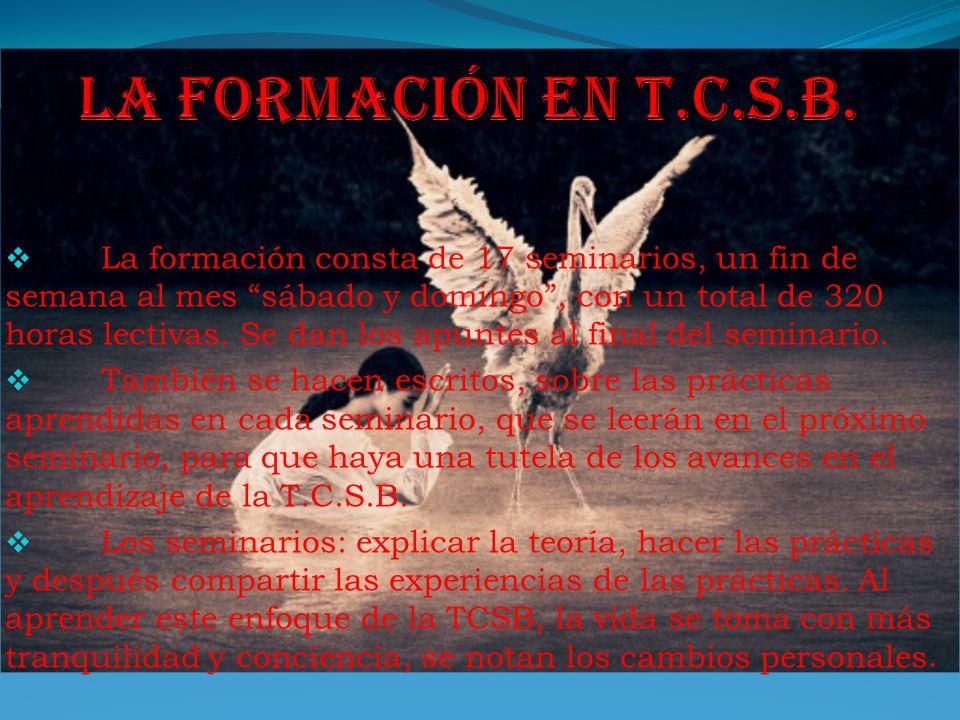 La formación en t.c.s.b.