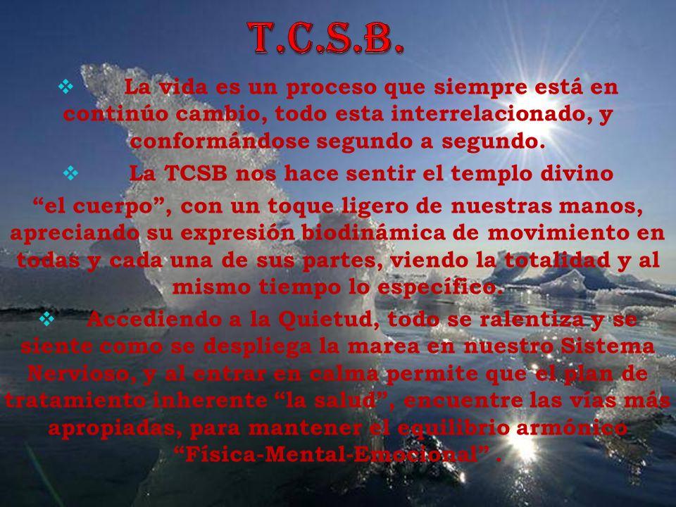 La TCSB nos hace sentir el templo divino