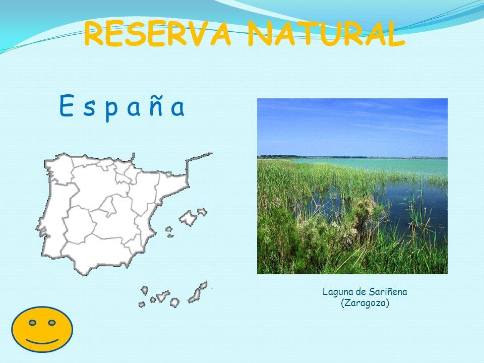 Laguna de Sariñena (Zaragoza)