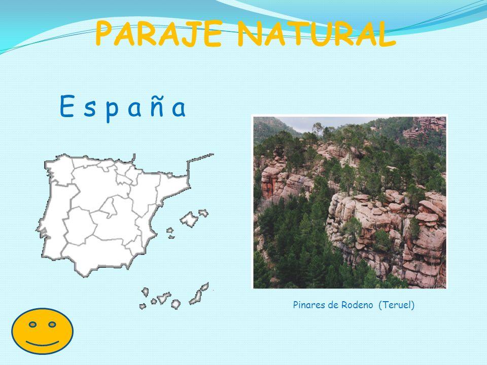 Pinares de Rodeno (Teruel)