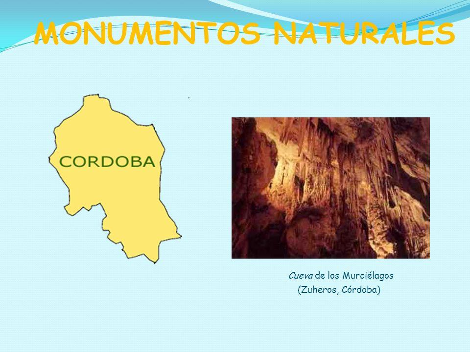 Cueva de los Murciélagos