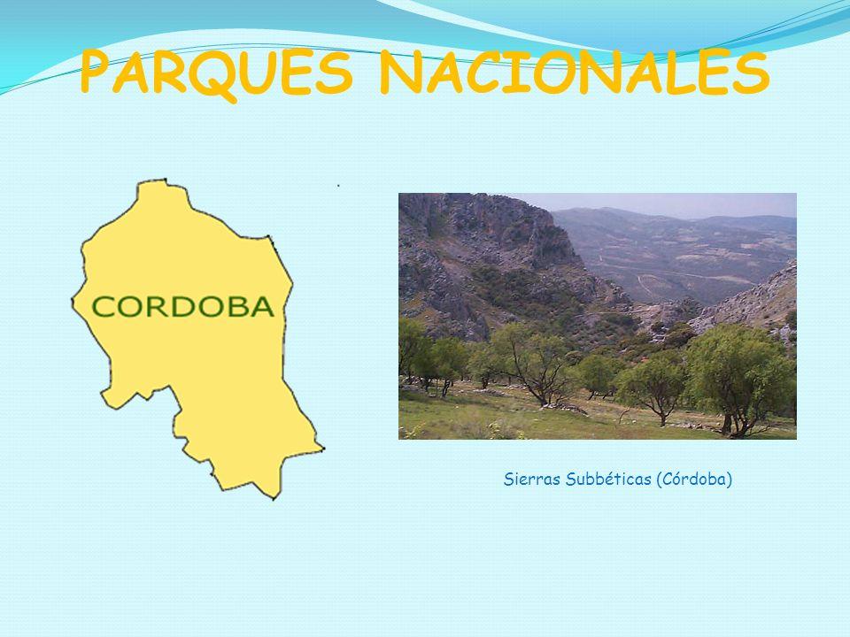 Sierras Subbéticas (Córdoba)