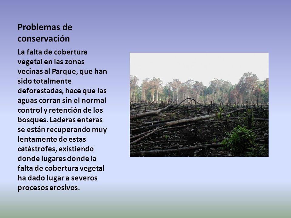 Problemas de conservación