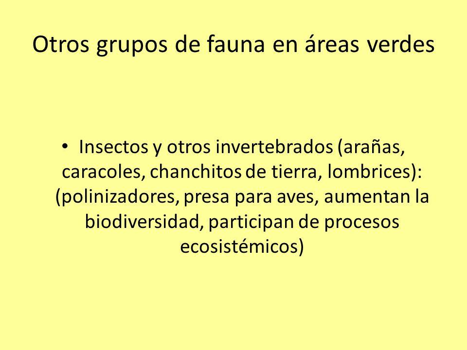 Otros grupos de fauna en áreas verdes