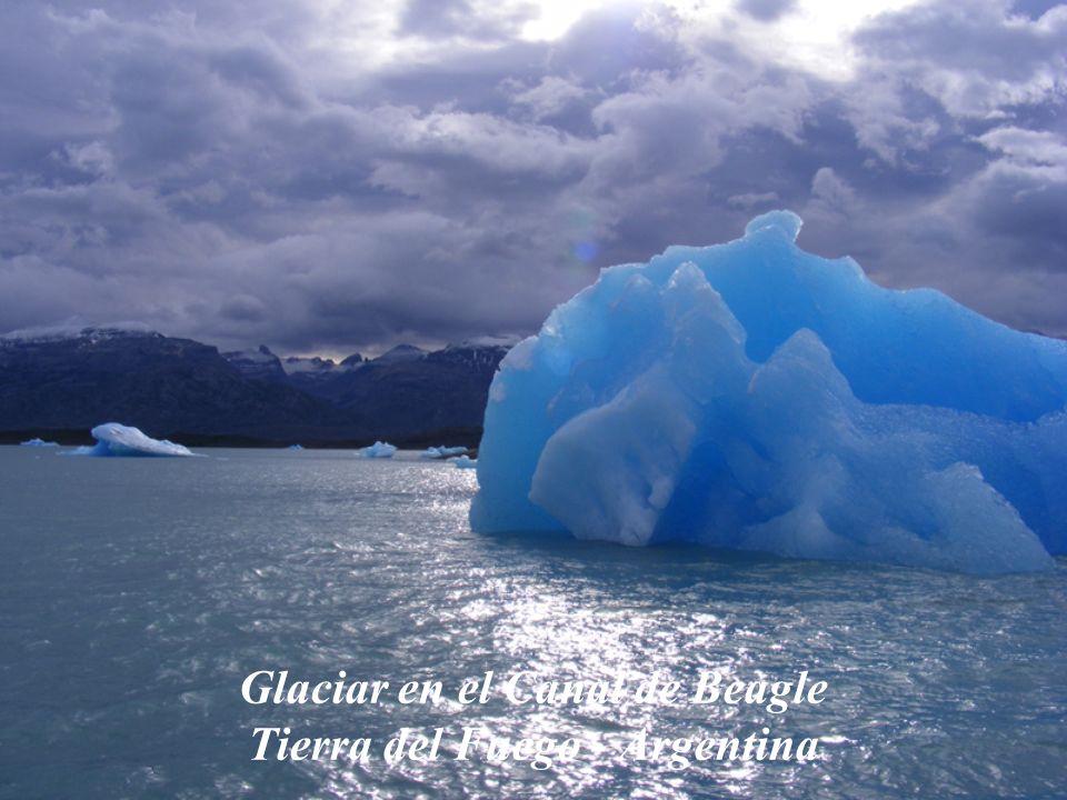 Glaciar en el Canal de Beagle Tierra del Fuego - Argentina